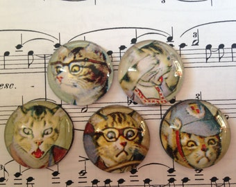 Set of 5 Glass Magnets, Fridge Magnets, Cute Cats!