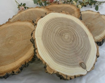 "7"" Set of 5 Elm Slices ~ 5 Wood Slices ~ Wood Slabs ~ Rustic Wedding Decor ~ Summer Wedding ~ Fall Wedding ~ Rustic Wood Slices for Wedding"