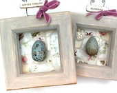Pair of framed eggs, boxed egg pictures, faux painted eggs, wild bird eggs, mosaic egg picture, vintage china picture, set of bird pictures