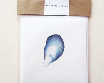 Mussel Shell Greetings Card