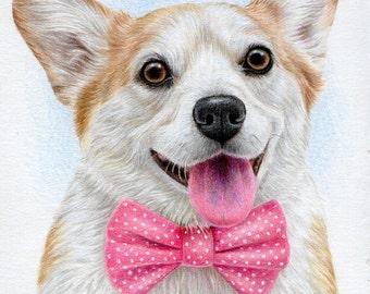 Original colored pencil portrait Corgi, Dog  A5