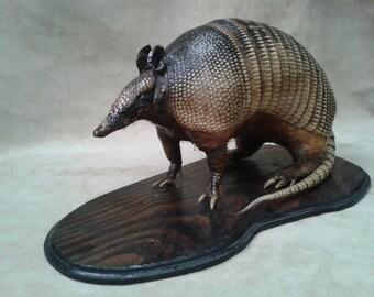 Armadillo Taxidermy, real animal