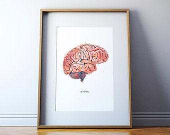 The Human Brain, Sagittal View Watercolor Print - Anatomical Brain Art - Brain Print