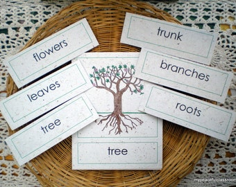 Parts of a Tree: Montessori Botany Cards for the Child