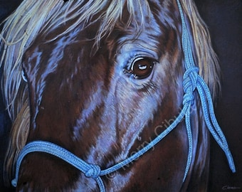 """An original colored pencil drawing, entitled """"Beau"""""""