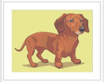 Dachshund dog cross stitch pattern. Animal. Dog. Short legged, long bodied breed. Hound family.