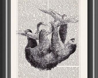 sloth upcycled dictionary print vintage animal illustration art print wall art home decor #121
