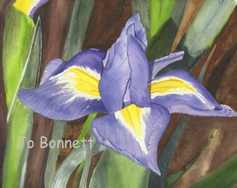 Purple Iris Watercolor Art Print