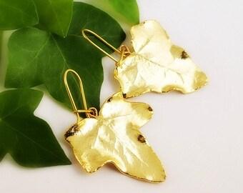 real ivy leaves earrings, ivy leaf, ivy leaves gold plated, ivy earrings, leaf earrings, leaves earrings, ivy leaf earrings, golden ivy leaf