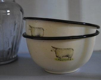 Two Vintage Enamel Farmhouse Style Bowls
