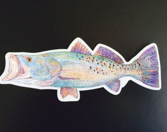 Rainbow Trout Window Decal