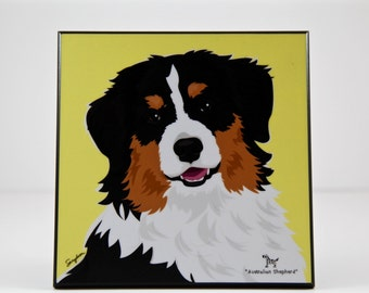 Australian Shepherd Laminated Picture
