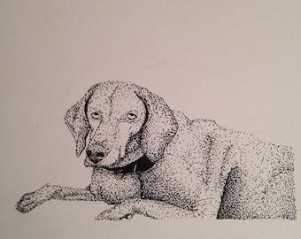 Custom Pet drawing
