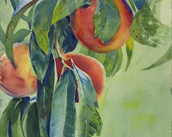 Peaches, Original Watercolor Painting