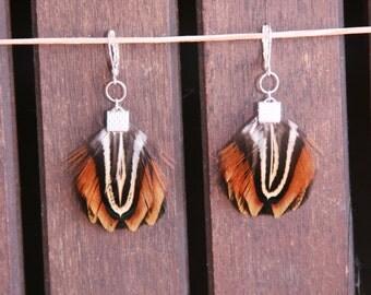 Copper Tiger Eye Feather Earrings