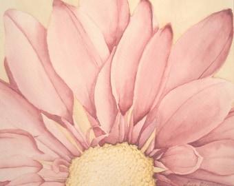 Pink Daisy Fine Art Giclée Print