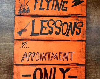 Flying lessons by appointment only sign