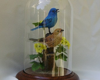 "Indigo Buntings hand-painted sculpture in 8"" crystal dome"