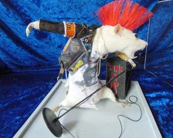 Punkrock taxidermy rat