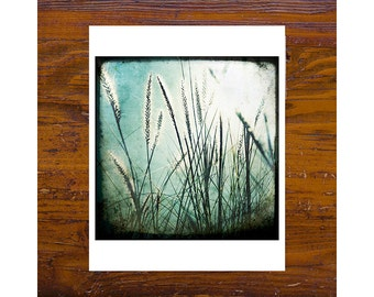 8x8 Print [JCP-004] - Grass #1