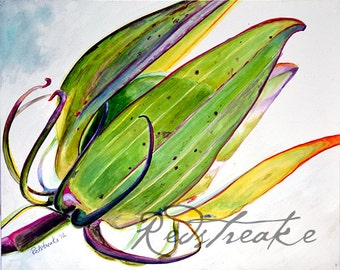 Flower Pod botanical study Arboretum floral ORIGINAL watercolor painting by Redstreake
