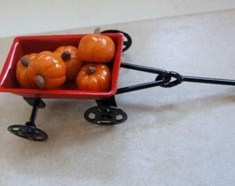 5 Mini Pumpkins