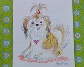 Shih Tzu Mini Sketch Colored Pencil Original