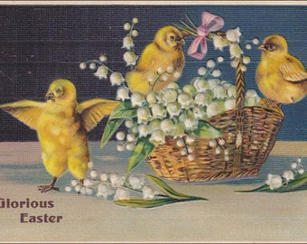 Vintage Glorious Easter chicks , basket, lilies of the valley vintage Easter postcard