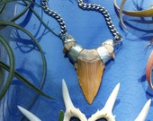 Shark Tooth Necklace - Shark Tooth Pendant - Ancient Shark Tooth from Morocco - Shaman Necklace - Bohemian Jewelry