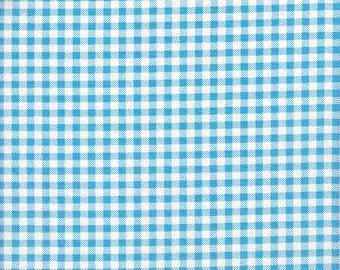 Clothworks Organic Picnic Pals Gingham in Blue - Half Yard