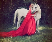 Sample Sale Miranda Medieval Dragon Brocade Red Gothic Corset Gown with Chiffon Cape!  Medium