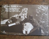 SALE !!! Antique Postcard. From my album Cats and Kittens. Real Photo. 1930 era