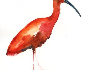 SCARLET IBIS Original watercolor painting 8x10inch(Vertical orientation)