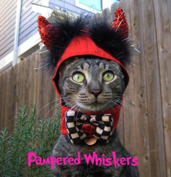 Little Devil costume for cats and dogs with no hatbox