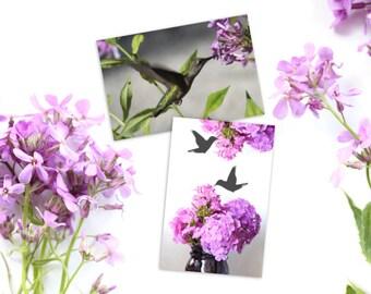 Hummingbirds, pink flowers, floral art, botanical prints, garden decor, nature photography, bird nerd, hummingbird art, Mothers Day gift