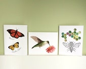 Winged Things - 5 Notecards