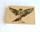 contemporary decor: fighting sparrow. art panel