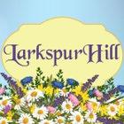 LarkspurHill