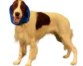 Dog Snood, custom made of fun swimsuit fabric to keep ears clean