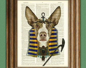 Not-quite Anubis Ibizan Hound Egyptian dog god illustration beautifully upcycled dictionary page book art print