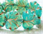 Czech glass maple leaf beads, aqua turquoise opal bead lot of (20) - CP225