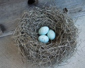 Nest Woodland Rustic Forest Bird Handmade with Pale Blue Green Crow's Eggs
