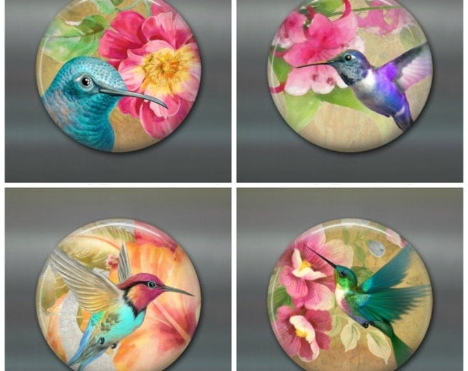 "3.5"" housewarming gift hummingbird magnet colourful bird kitchen decor large fridge magnet bird art kitchen art set of magnets"
