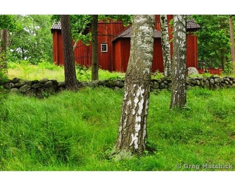Fine Art Color Nature Photography of a Red Home in the Woods in Finland