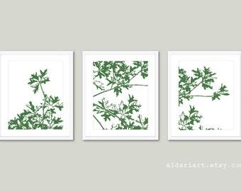 Autumn Tree Art Prints - Maple Tree Branches Wall Art - Green and White - Modern Nature Art - Fall Tree Wall Art - Aldari Art