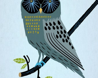 iOTA iLLUSTRATION - The Perching Owl - Limited Edition Animal Art Print