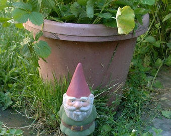 Mr Gnome Green 9 Inch Tall R50G