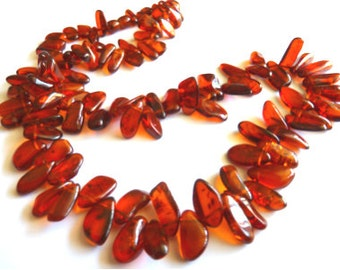 Baltic Amber Cognac Sea-Buckthorn Beads Necklace Natural 25""