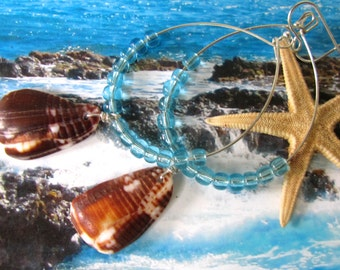 Shining Sea Shell Earrings