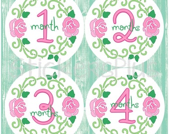 Baby Month Stickers Plus FREE Gift Monthly Baby Milestone Stickers Baby Girl Rose Vine Flower Monthly Baby Age Stickers Photo Prop